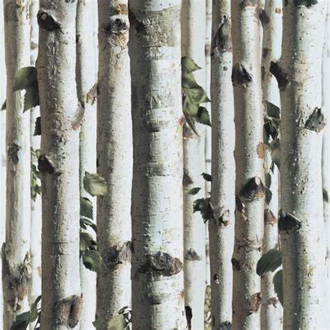wallpaper grey twigs silver birch j21517 forest tree grey wood twig