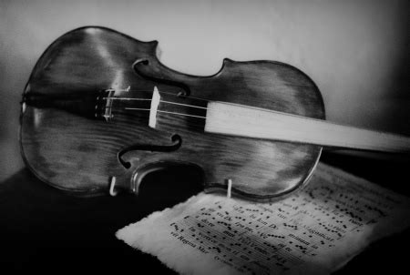 abstract violin wallpaper violin photography abstract background wallpapers on