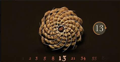 observed pattern in nature pi the fibonacci sequence math video pbs learningmedia