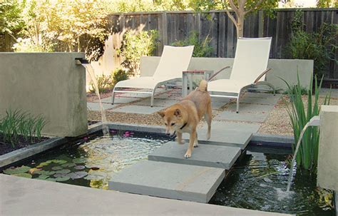 Pet Friendly And Contemporary Landscaping Ideas Home Landscaping Ideas For Backyard With Dogs