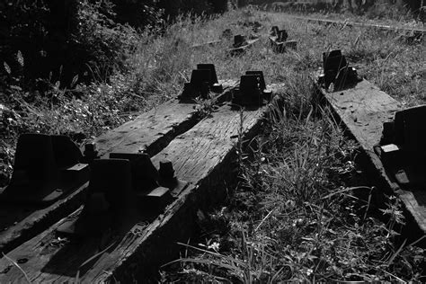 Railway Sleepers Cornwall by Photography By Martin Eager Landscape Nature Woodland