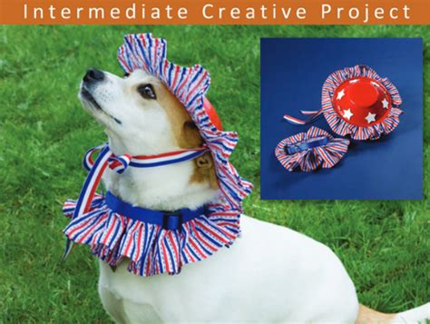 yankee doodle doggie flowers 4th of july freedesigns