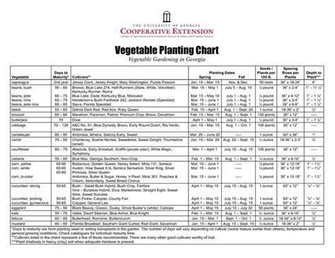 vegetable garden template pin by weirauch on garden ideas