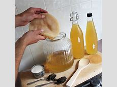 How to Make Kombucha - Organic Mechanic Healthy Kombucha Scoby