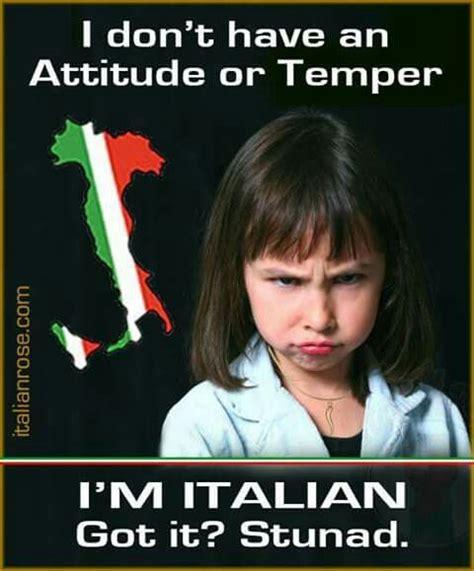 Italian Memes - i m not yelling on being italian pinterest italian
