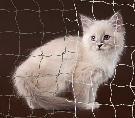Boy Cat Nets in 50mm mesh   with stainless steel wire