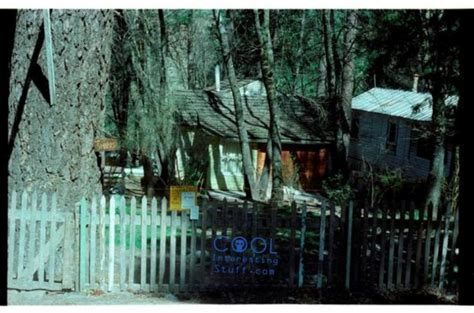 Keddie Cabin by The Strange Unsolved Crime The Keddie Murders Strange