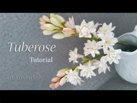 tutorial youtube how to make a gumpaste tuberose flower tutorial youtube
