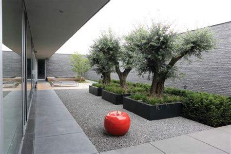 Balkon Sichtschutz Pflanzen 170 by 170 Besten Landscape Containers Bilder Auf
