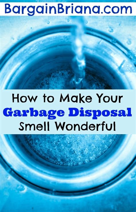 Can Detoxing Make Your Breath Smell by How To Make A Garbage Can Shed