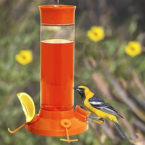 duncraft com fruit trio oriole nectar feeder