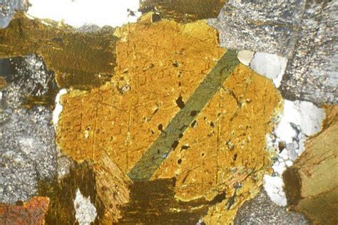 granodiorite thin section granodiorite antartica thin section microscope slide