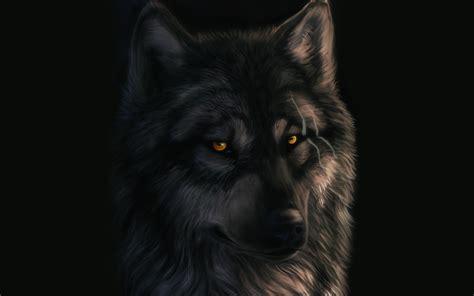 wallpaper serigala hitam http dark sheyn deviantart com art wolf 189664084 full