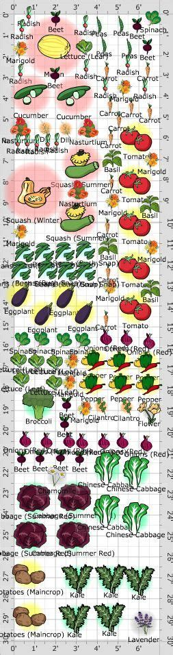 Vegetable Garden Layouts Vegetable Garden Layout Sle Companion Planting Design Garden Diy Gardens