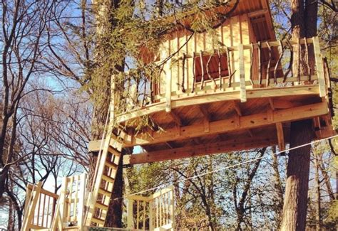 treehouse builder on building treehouses popular woodworking magazine