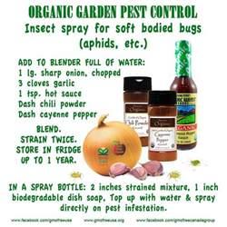 organic garden pest repel pests