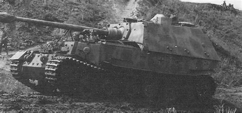 panzerj ger on the battlefield world war two ferdinand panzerjager sdkfz 184 world war photos