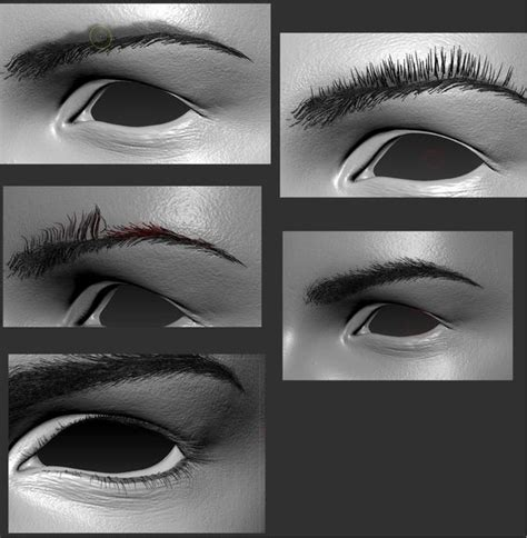 zbrush eyebrows tutorial 5 eyebrow variations using fibre mesh zbrush pinterest