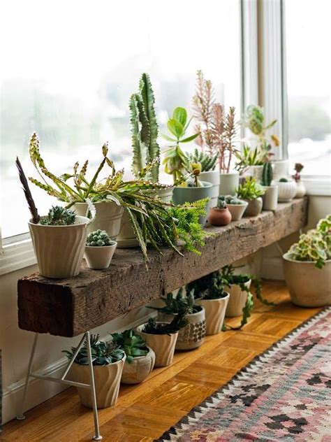 Ideas For Indoor Potted Plants Design 25 Best Ideas About Plant Stands On Pinterest Indoor Plant Decor Plant Decor And Mid Century