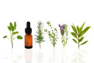 Essential Oils Essential Oils Lifying A Great