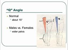 The Knee Tibio-Femoral. - ppt video online download Q Angle Genu Valgum