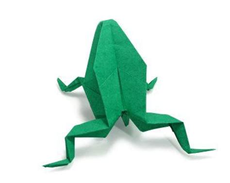 Biology Origami - how to make an origami frog