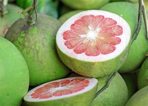 fruit x asia 24 asian fruits packed with nutritional goodness