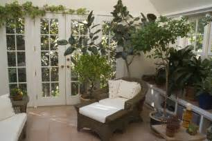 6 tips for optimal indoor plant growth pure nutrients