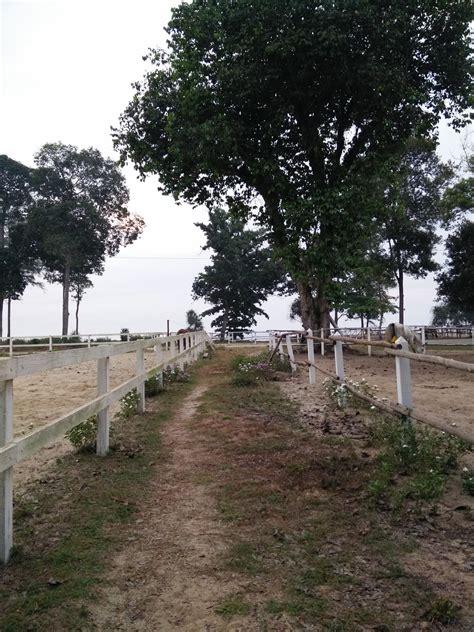 Pagar Kandang Kuda casa titik cherating
