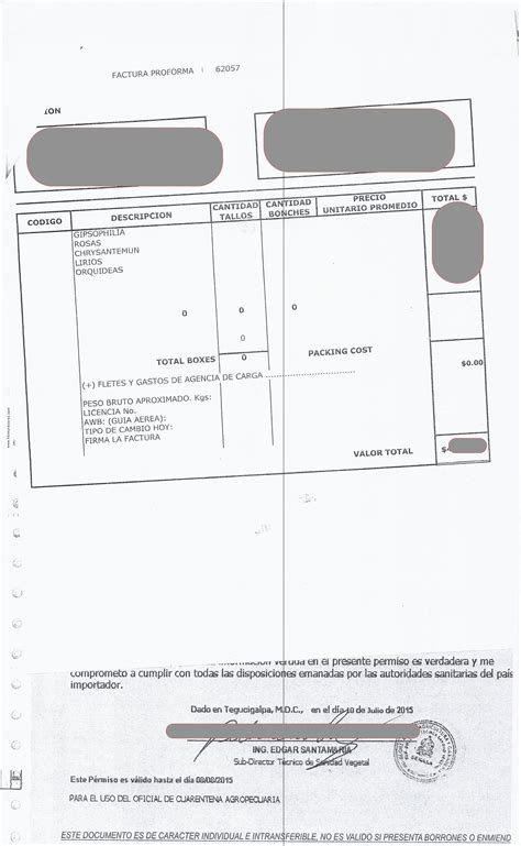 recibo de pago tgr 1 newhairstylesformen2014