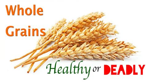 whole grains leaky gut whole grains nutrient rich superfoods or inflammatory