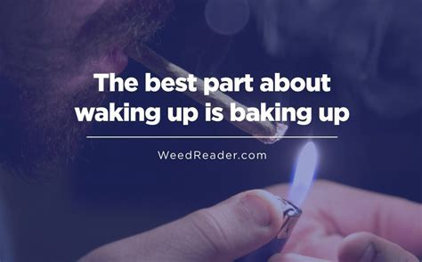 waking up to how cannabis can be key to feeling and aging better ã a guide to new uses and benefits of marijuana for your mind books you can t complain when you ve got reader
