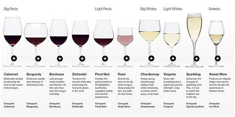 types of barware red white wine glass guide thegrape