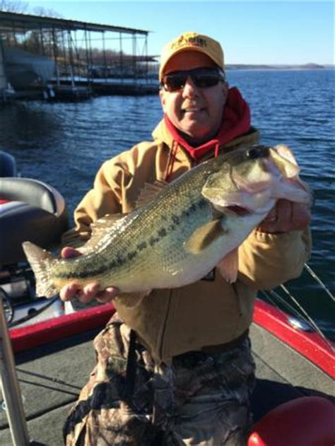 table rock lake bass fishing table rock lake largemouth bass picture of branson