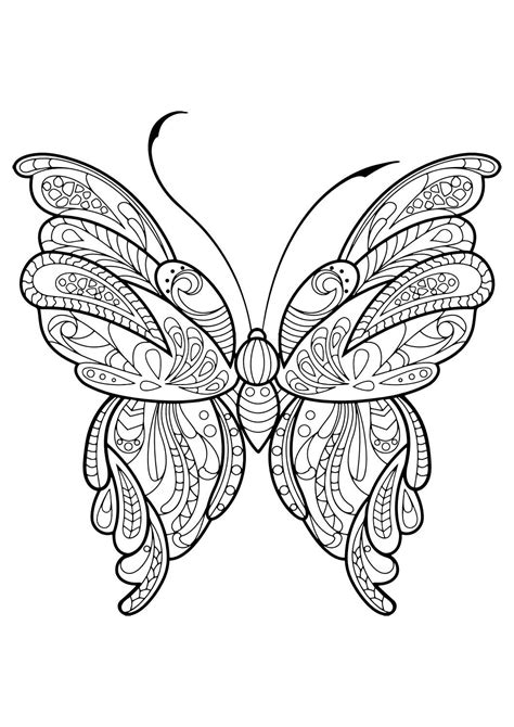 coloring book page butterfly adult butterfly coloring book coloring books beautiful