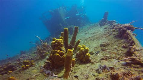 dive barbados barbados best wreck dives diving carlisle bay