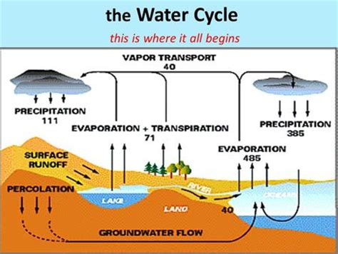 water table and aquifers what is ground water ground