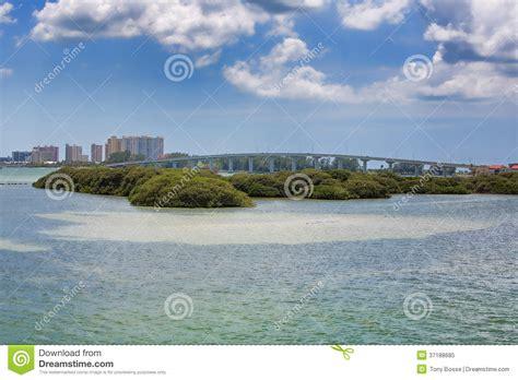 wild bird sanctuary in salt marshes stock image image of