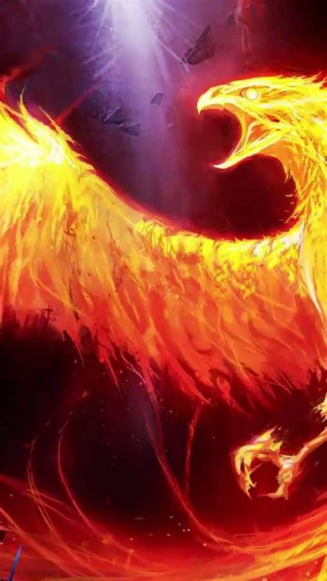 android wallpaper hd phoenix  android wallpapers