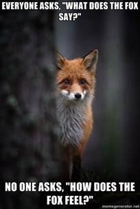 Fox Meme - i guess he feels foxy meme collection
