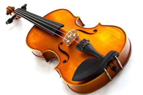 Golpearon y ataron a un arbol a violín en Sgo del Estero