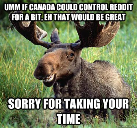 Canadian Moose Meme - happy birthday amoosing moose quickmeme