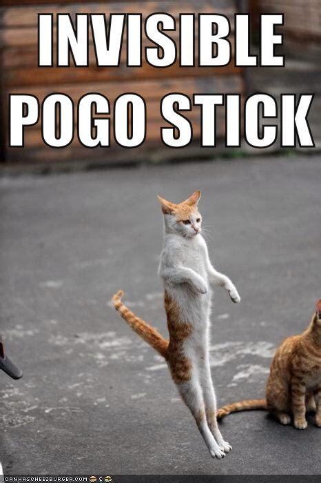 Invisible Cat Meme - invisible pogo stick cat meme cat planet cat planet