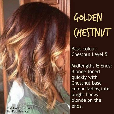 what colors look with brown hair 25 best ideas about chestnut hair colors on