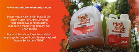 Harga Madu Hutan Asli by Harga Madu Hutan Kalimantan Jual Madu Asli