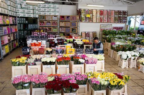 grossista fiori flora olanda flora olanda ingrosso piante fiori e non