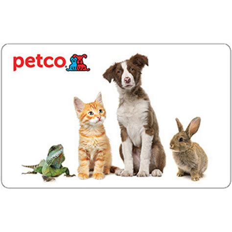 Figs Gift Card - winner of fig the cat s 50 petco gift card managedmoms com