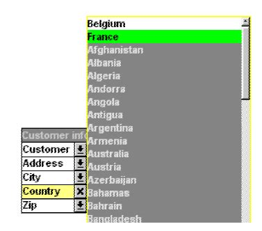 Qlikview Tutorial French | boxes objects and document properties qlikview tutorial