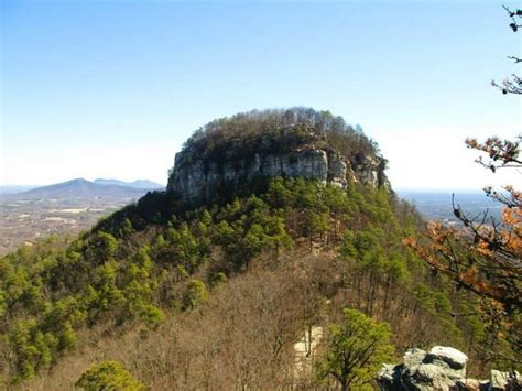 Pilot Knob Nc by View From The Top Of Pilot Mountain Picture Of Pilot
