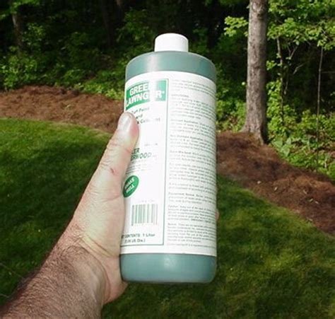 spray paint your lawn green lawn green